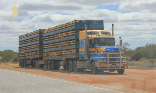 Road Trains in Australia, picture taken by this blogger!